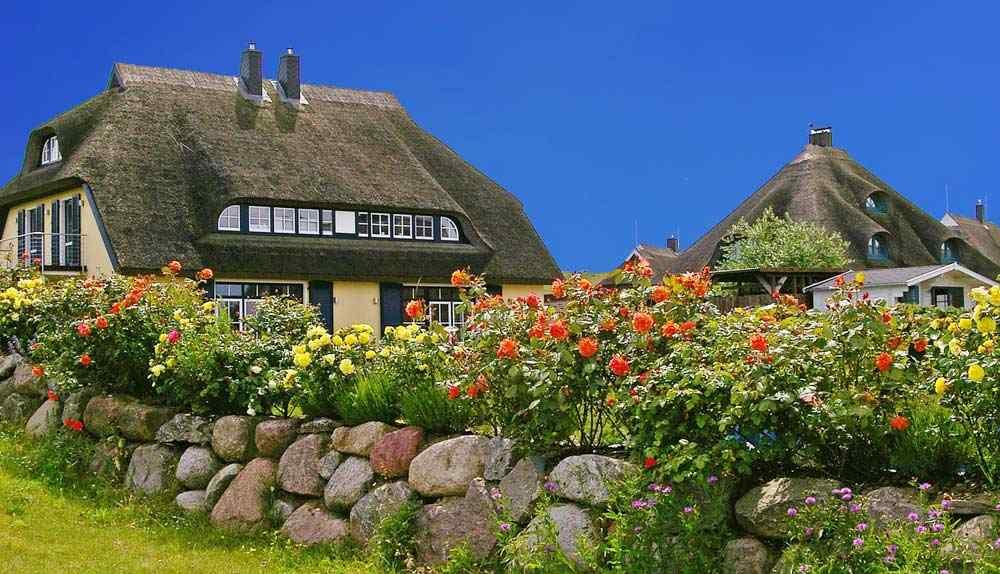 Reetdachhäuser auf der Insel Rügen