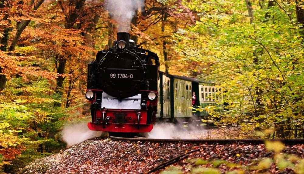 Der Rasender Roland als dampflokbetriebene Schmalspureisenbahn